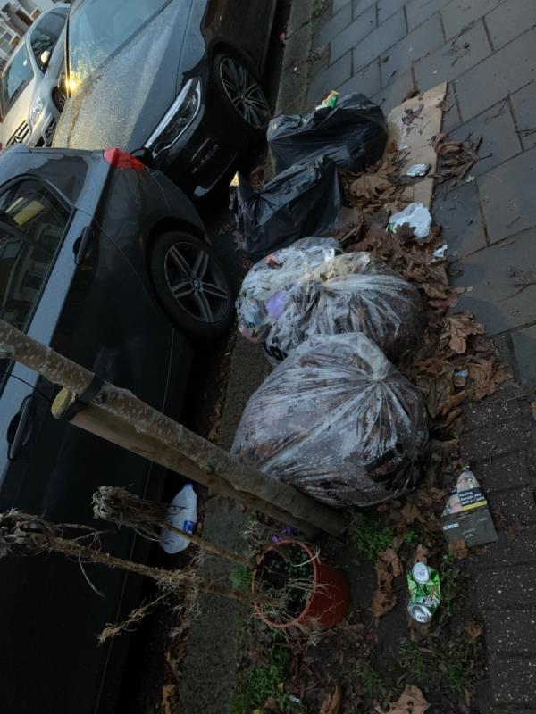 Bags + plant-56 Sherrard Road, London, E7 8DW