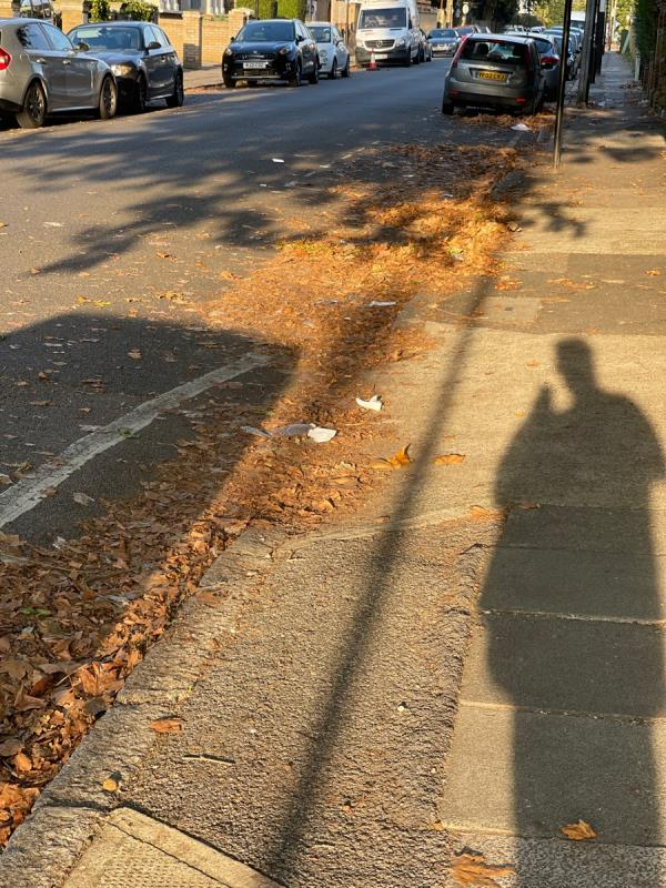 Tons of leaves from last autumn with lots of trash mixed in with them-38 Clova Rd, London E7 9AH, UK