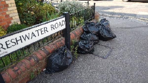 black bags dumped on freshwater Road near to the junction with Liverpool Road-82 Cholmeley Road, Reading, RG1 3NB