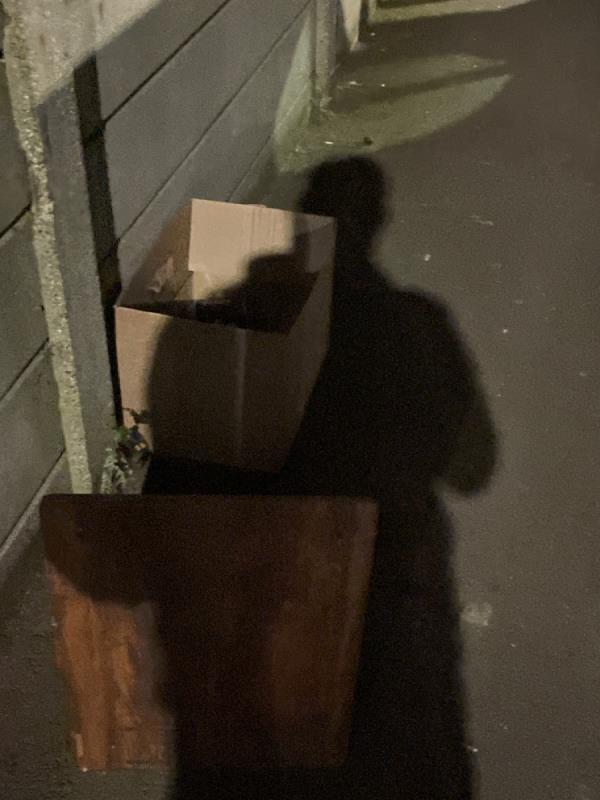 Rubbish  image 2-163 Katherine Road, East Ham, E6 1ES