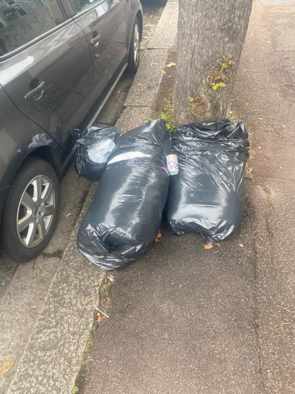 Duvet and clothes in bin bags-109 Meanley Road, Manor Park, E12 6AS