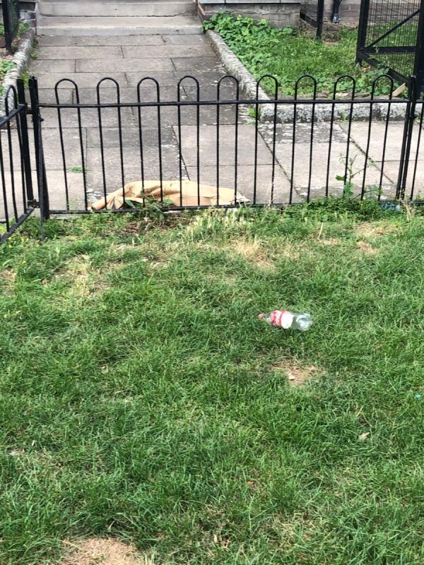 Litter in park -80 Hammersley Road, London, E16 1FY
