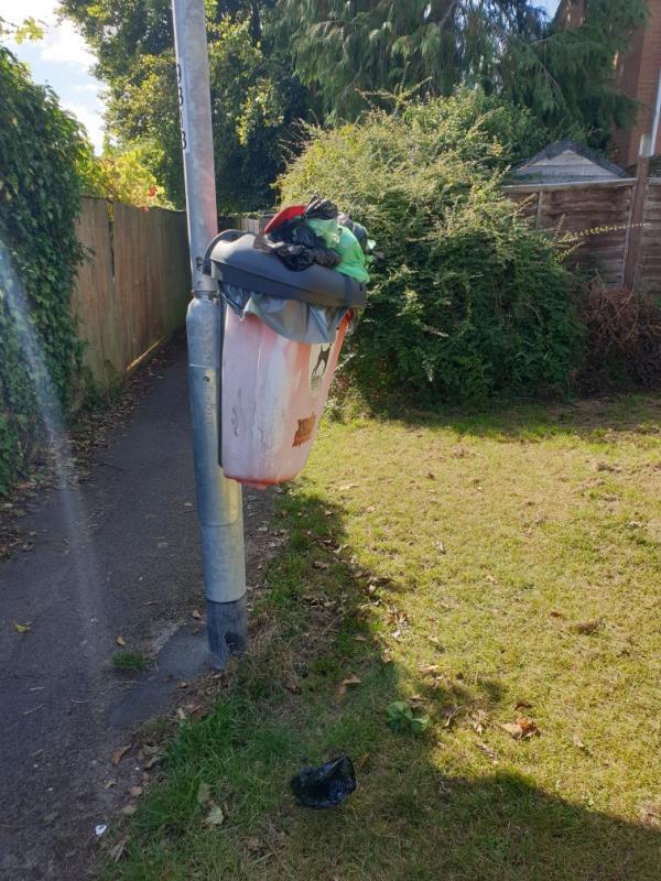 Dog poo bin needs to be emptied -19 Lowfield Green, Reading, RG4 6NZ