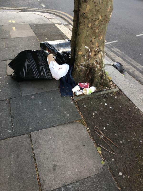 Bin bags untied-8 Orwell Road, Plaistow, E13 9DH