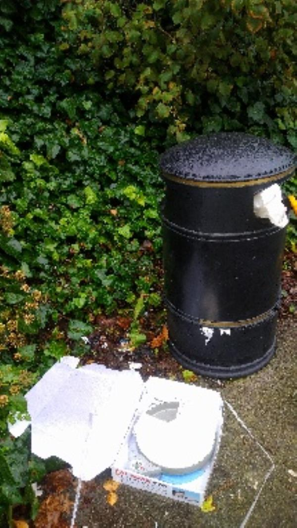 Flytipped items around bin and bin full of household waste no evidence taken -33 Wolseley Street, Reading, RG1 6AZ