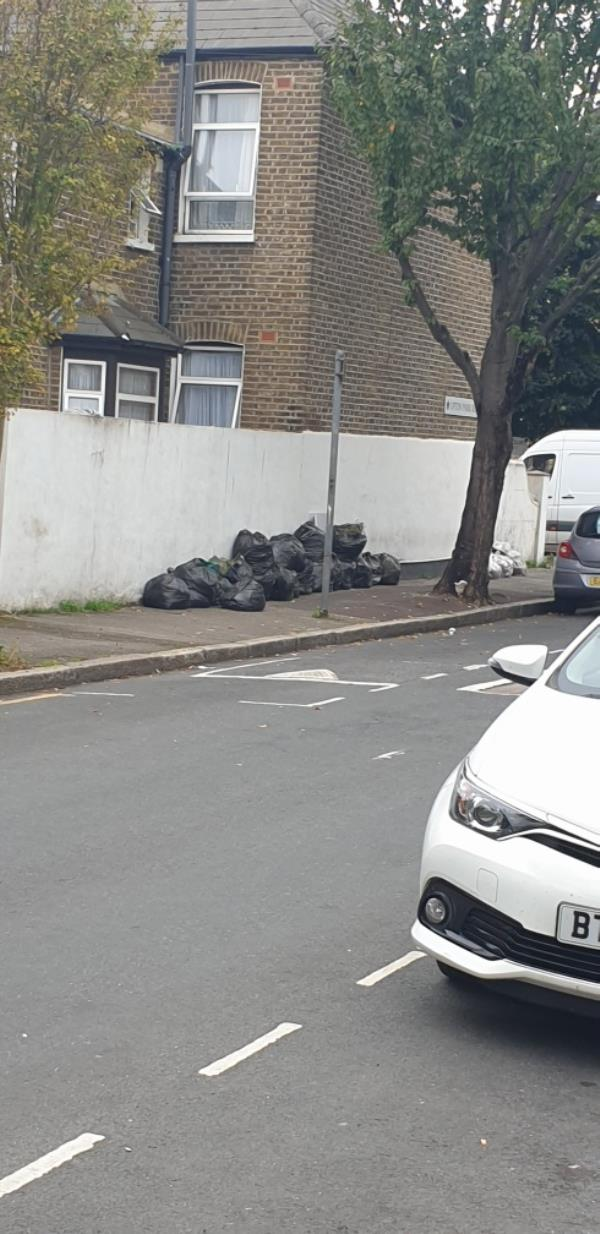 Daily flytipping at this corner. About 20 bags of waste. Please put up a camera or something as a deterrent. This is becoming a health hazard now.-156 Upton Park Rd, London E7 9QB, UK