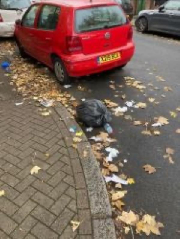 Please clear build up of litter-160 Upper Brockley Road, Honor Oak Park, SE4 1TF