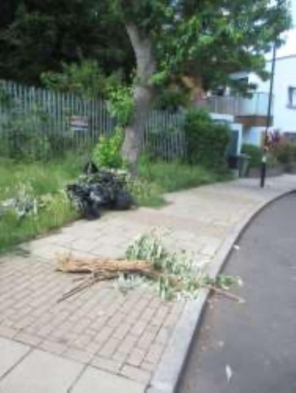 Please clear Garden waste-63 Stanstead Road, London, SE23 1HG