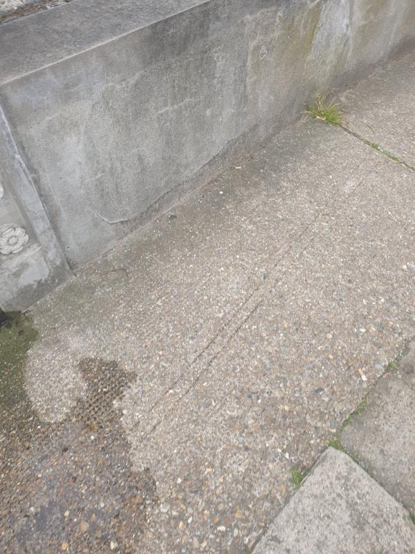 Dog mess and broken glass from car window at base of tree and across pavement. Reported once and the area has not been swept.  image 1-131a HENNIKER, East Ham, E6 3HT