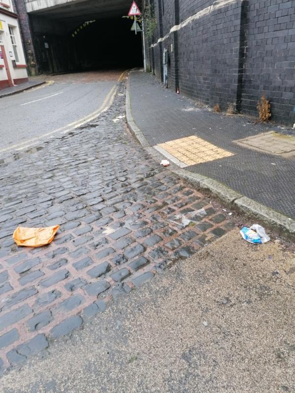 Rubbish in gutters and on path. -Great Western Inn, 9 Sun St, Wolverhampton WV10 0DJ, UK