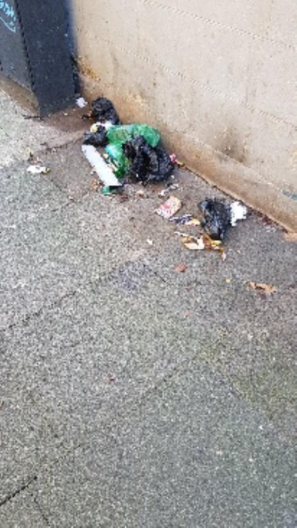 glass, rubbish bags-53 Perth Road, London, E13 9DS