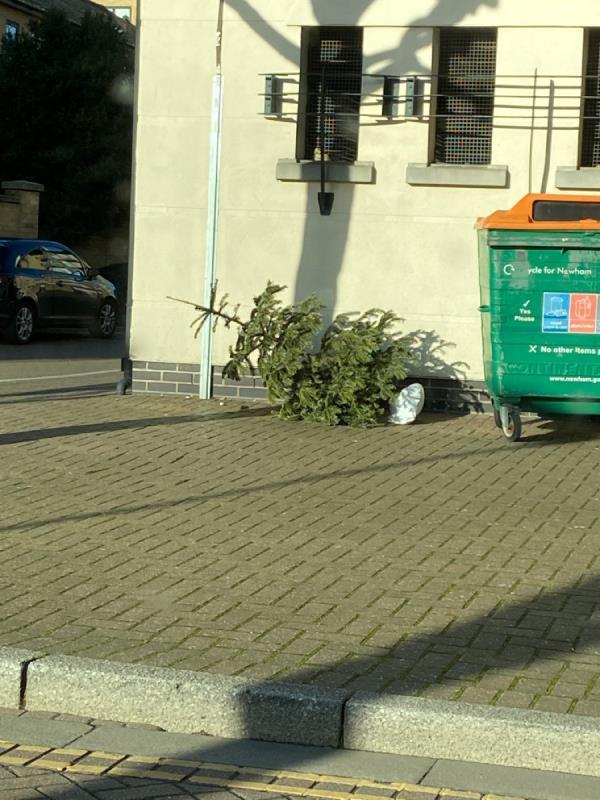 Christmas tree dumped outside Conrad House-19 Wesley Avenue, London, E16 1TD