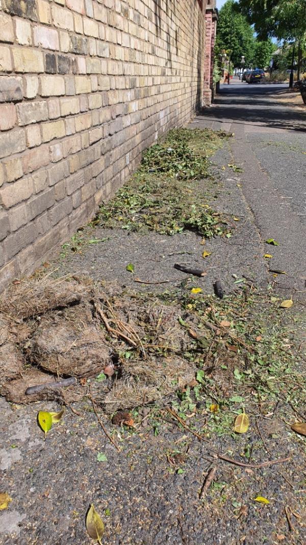 grass. RICHMOND ROAD-46 Windsor Road, London, E7 0QX