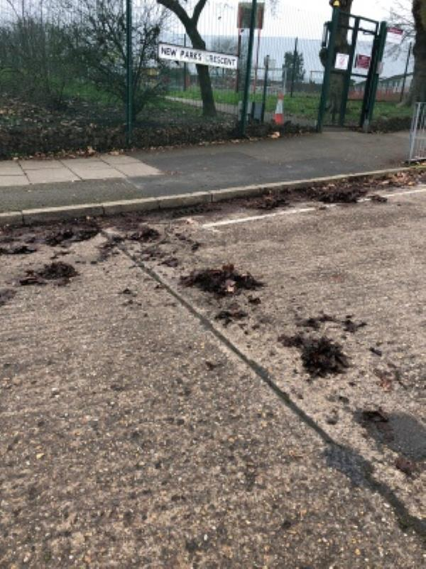 these leaves have been blocking the drains here for a while. i even seen a lady trying to clear this herself..its not her job! -225 New Parks Crescent, Leicester, LE3 9NZ