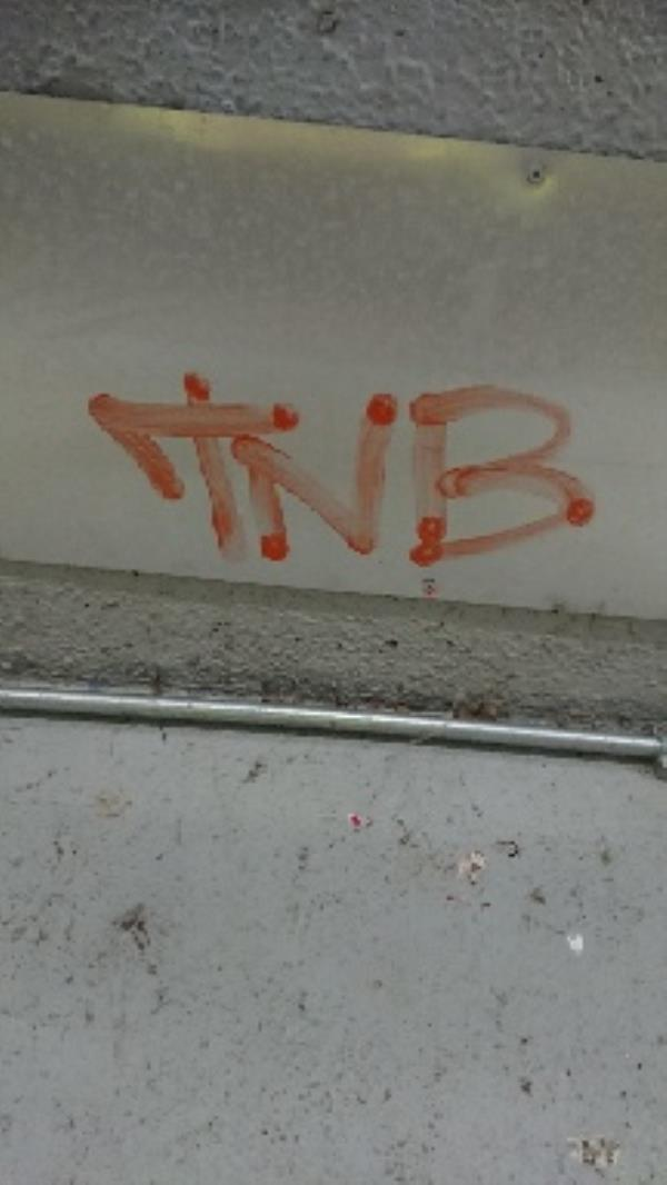 Graffiti in underpass  image 2-28 Northbrook Road, Reading, RG4 6PF