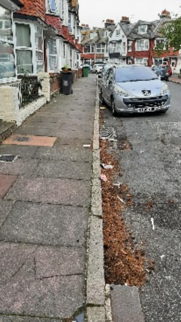 from NP please can we have a street sweep in Woiilowfield Sq-17 Willowfield Square, Eastbourne BN22 8AN, UK