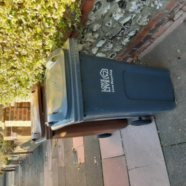 SEESL - 02/12/19. Outside 39 Vicarage Road, Old Town. Please remove brown gw bin (no permit) and surplus black refuse bin asap.-31 Vicarage Road, Eastbourne, BN20 8AL