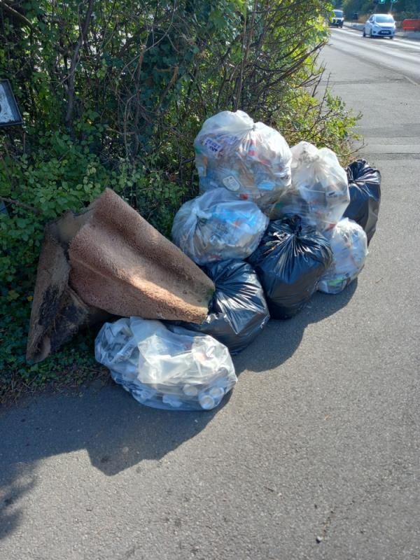 Womble litter pick, 8 bags of grot , left on the corner of Great Meadow Road/Anstey Lane -Anstey Lane, Leicester, LE3 9EW