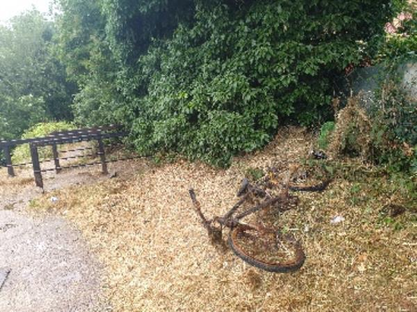 bike has been fished out of river and is lying beside river path at intersection with scours lane-Berkshire Canoe And Chandler Scours Lane, Reading, RG30 6AX