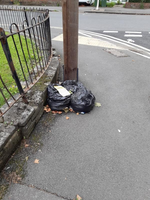 Three bags of green waste opposite 77 Tarling Road E16-79 Tarling Rd, London E16 1HR, UK