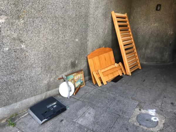 Fly tipping outside front door of 203 Wensley Road-358 Wensley Road, Reading, RG1 6ED