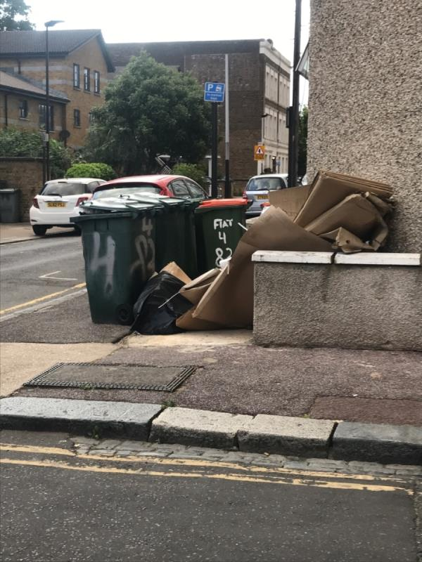 Pile of crap outside corner HMO house at junction with Waterloo road. Also bins all over the public footpath permanently. Eyesore horrible and obstructing footpath . FAO Enforcement -81 Tower Hamlets Road, London, E7 9DA