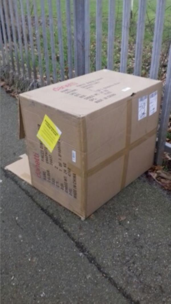 A cardboard box dumped opposite Southern Primary School -3 Southern Road, London, E13 9HU
