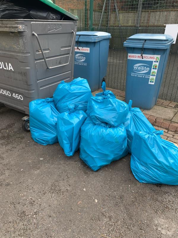 We have been collecting rubbish from the streets -36A Belgrave Rd, Leicester LE4 5AS, UK