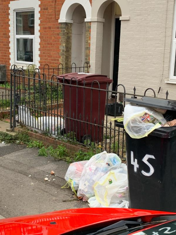 Bins are constantly left on the pavement and are overflowing. Rubbish is on the floor and this is attracting rats. Rubbish is also not recycled and glass is on the pavement. This has been happening constantly and nothing is taken away. -45 Blenheim Road, Reading, RG1 5NG