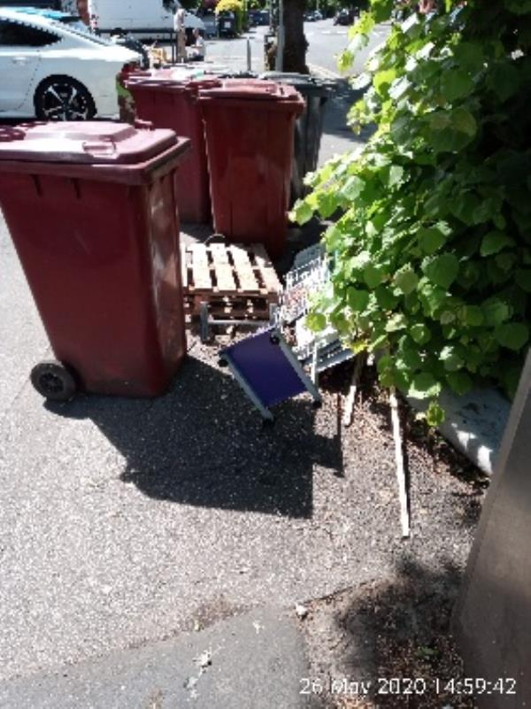 Rubbish next to tree outside 50 erleigh road-50 Erleigh Road, Reading, RG1 5NA