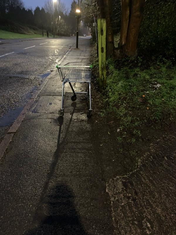 It's another shopping trolley. Invisible to council operatives. It's been around for over a week. Could someone collect it. -286 Thurcaston Road, Leicester, LE4 2QG