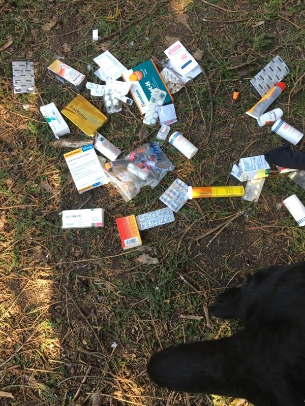 Discarded medication behind recycling bins in Prospect Park car park. Possibly urgent? Not sure what they all are for.-36 Liebenrood Road, Reading, RG30 2ND