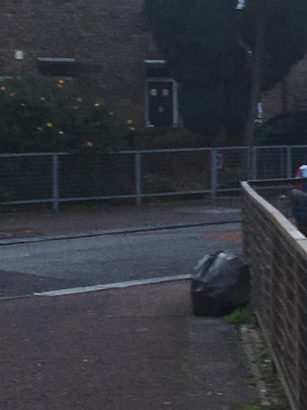 Black bag of rubbish. Somebody from wellington road is doing this daily-45 Wellington Road, London, E7 9BY
