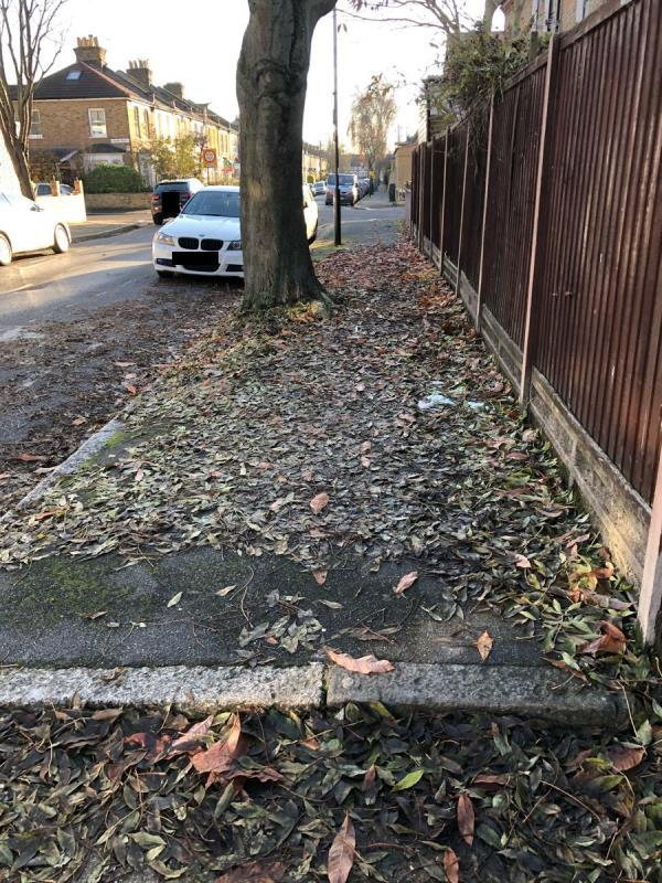 Thick layer of leaves that haven't even swept up for weeks. Very very slippery. -45 Lorne Road, London, E7 0LJ