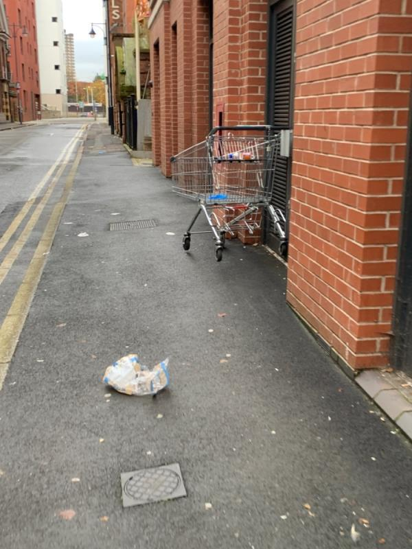 Lots of rubbish and a shopping trolly unbranded -124 Charles Street, Leicester, LE1 1RE