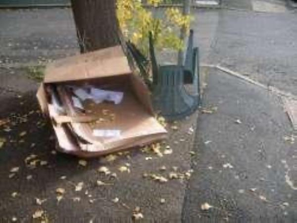 Junction of Hassocks Close. Please clear flytip-39 Kirkdale, London, SE26 4BT