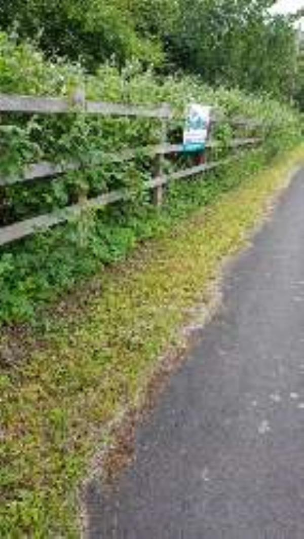 fly posting -Hillcrest/Liverpool Rd, Chester CH2 4BA, United Kingdom