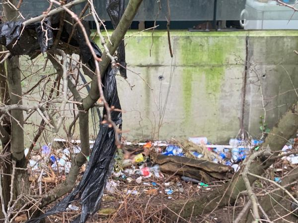 This is located in the bushes in the side of the Channelsea path that connects Cam Road with Abbey Lane so is about a minute's walk from Burford Wharf. The location of the path is runs beside Hallings Wharf. For a stretch of approx 10 metres it is festooned with rubbish, glass, plastic and litter. A danger for dogs and children alike. -Burford Wharf Apartments, 3 Cam Road, London, E15 2SG