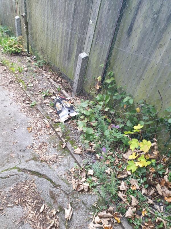 This is the second time I have reported issue and still not been dealt with.  The alleyway is very dirty and needs a full sweep, vegetation cut back and litter clearing.  Please can the council prioritise this.-21 Fircroft Close, Reading, RG31 6LJ