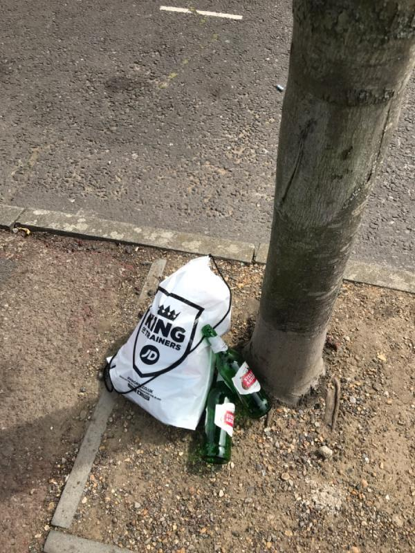 Carrier bag full of gas canisters. Joined by beer bottles-48 Wellington Road, London, E7 9BY