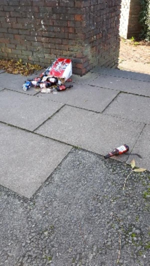 About 20 cans and bottles dumped. at the very end of Aldwick close before the bungalows some of it broken glass-97 Aldwick Cl, Farnborough GU14 8LL, UK