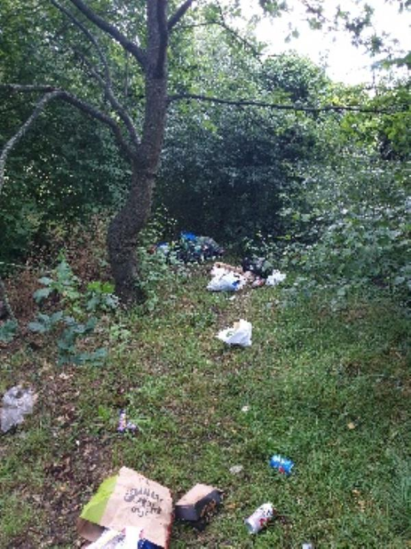 Flytipping again by bench situated at Wykeham Road entrance to Palmer Park-54 Palmer Park Avenue, Reading, RG6 1DP