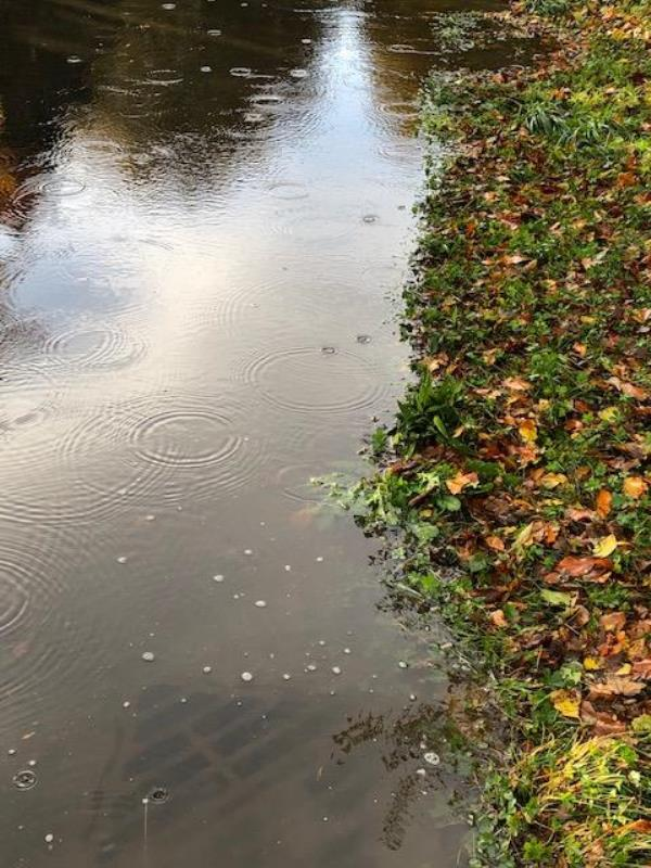 Three drains blocked and extensive dangerous road flooding this week. The drains were blocked to the right of 'The Farmhouse' driveway image 2-The Farmhouse BN180BA