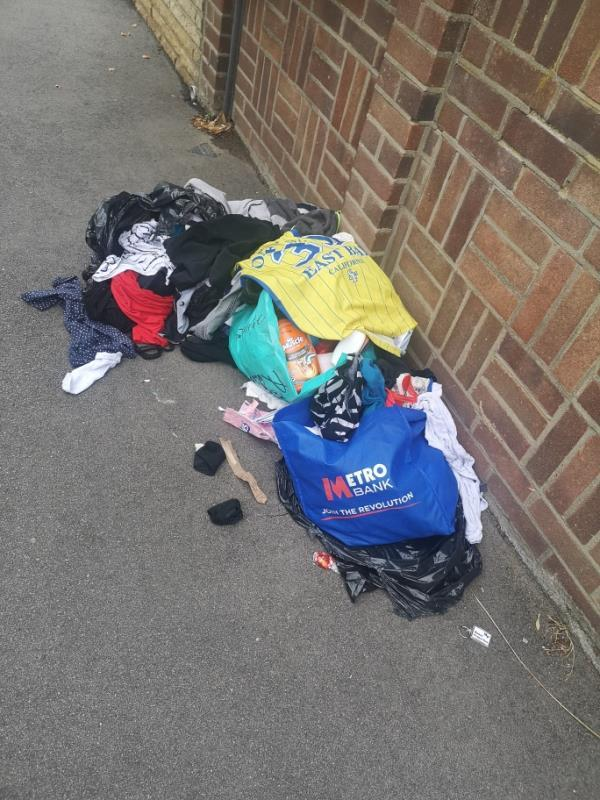 Bags of clothes and cleaning products -82 Albert Square, London, E15 1HH