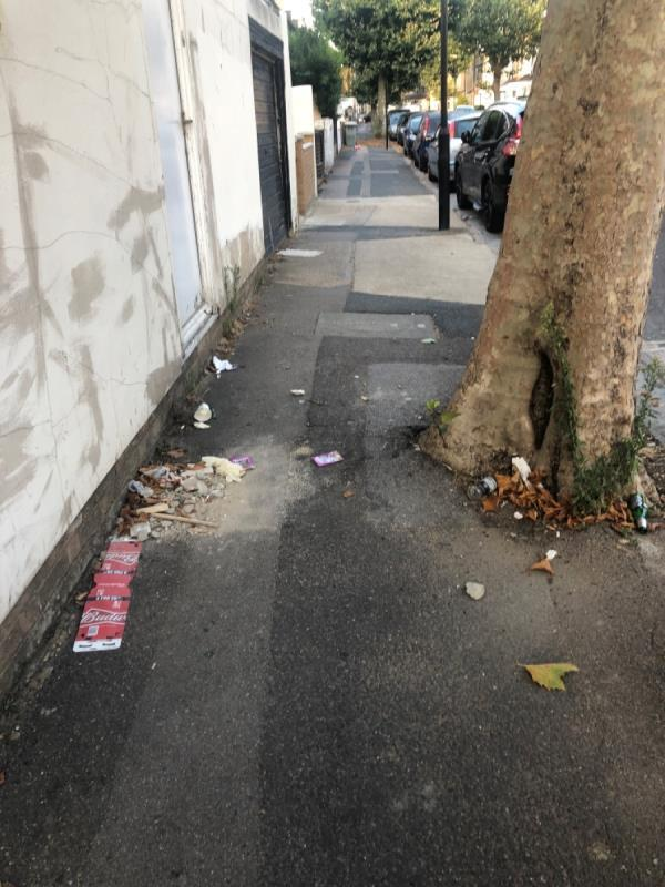 Reporting this again as you marked completed. The street needs clearing. Please address-26 Wilson Road, Plaistow, E6 3EF