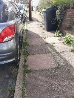 SEESL NF JN Zone2 10/10/19 @ 3pm please can you clear the weeds that are all along the public pathway on St Mary's Road, the area is looking very untidy and slippery causing potential falls and slips. many thanks Jo Nones image 1-9 St Mary's Road, Eastbourne, BN21 1QD