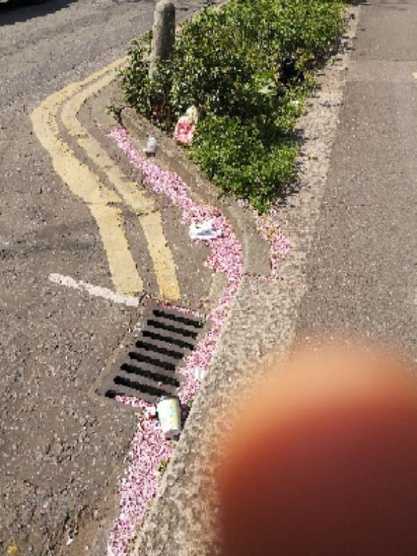 more littering -8 Clarence Rd, Manor Park, London E12 5BE, UK