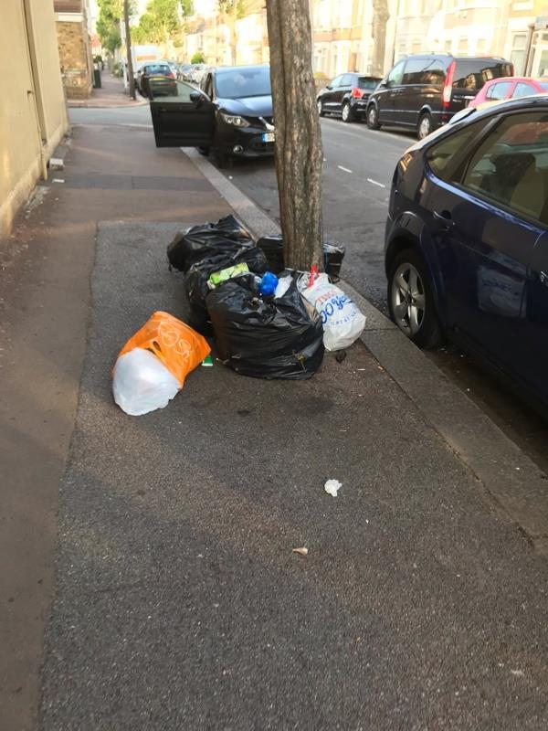 Bags of rubbish flytipped opposite 83 Dorset road-23 Ashley Road, London, E7 8PE
