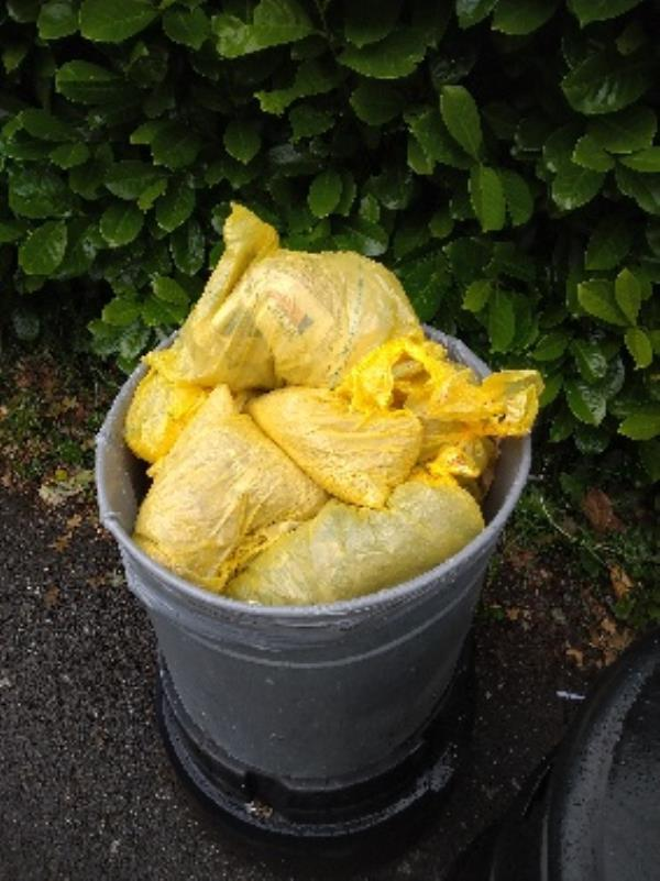 On going problem of rabbit waste/bedding being flytipped in bin no evidence /taken -Unnamed Road, Reading RG4 8TW, UK