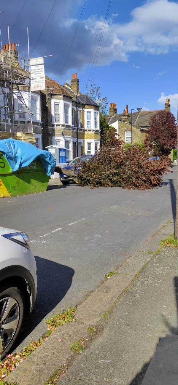 Fallen tree blocking road-8 Medusa Road, Lewisham, SE6 4JW